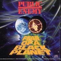 PUBLIC ENEMY: FEAR OF A BLACK PLANET