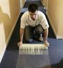 6st Häftande Skyddsfilm för mattor, 0,6x25m
