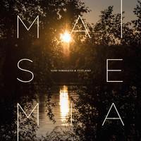 NORDLUND TOMI & SYVÄ JOKI: MAISEMIA LP