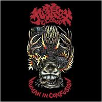 CLOWN: HUMAN IN CONFUSION LP