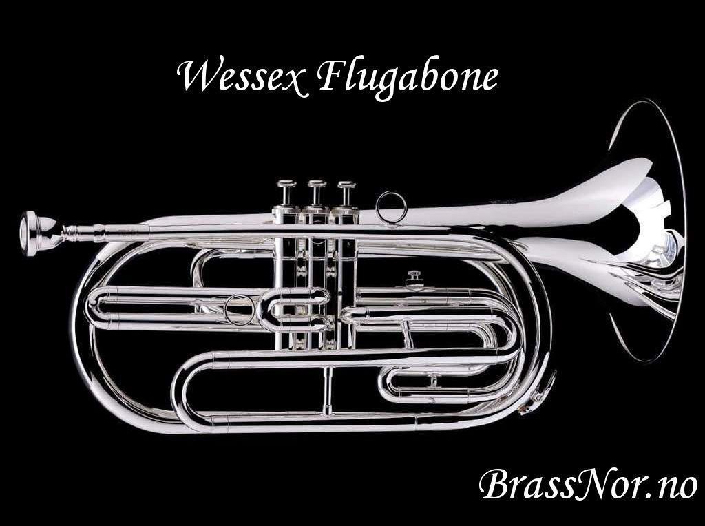 Wessex flugabone forsølvet