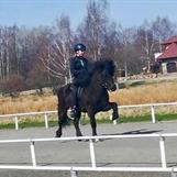 Arthur från SundsbergKval