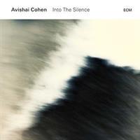 COHEN AVISHAI: INTO THE SILENCE 2LP