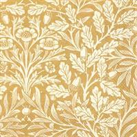 Acorn Gold Cream