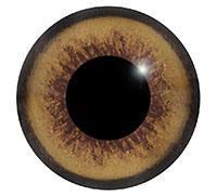 Ögon M38 9mm