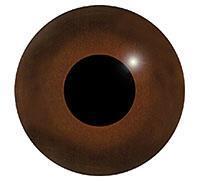 Ögon L30 4mm
