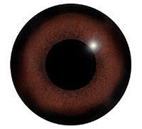 Ögon M68 18mm