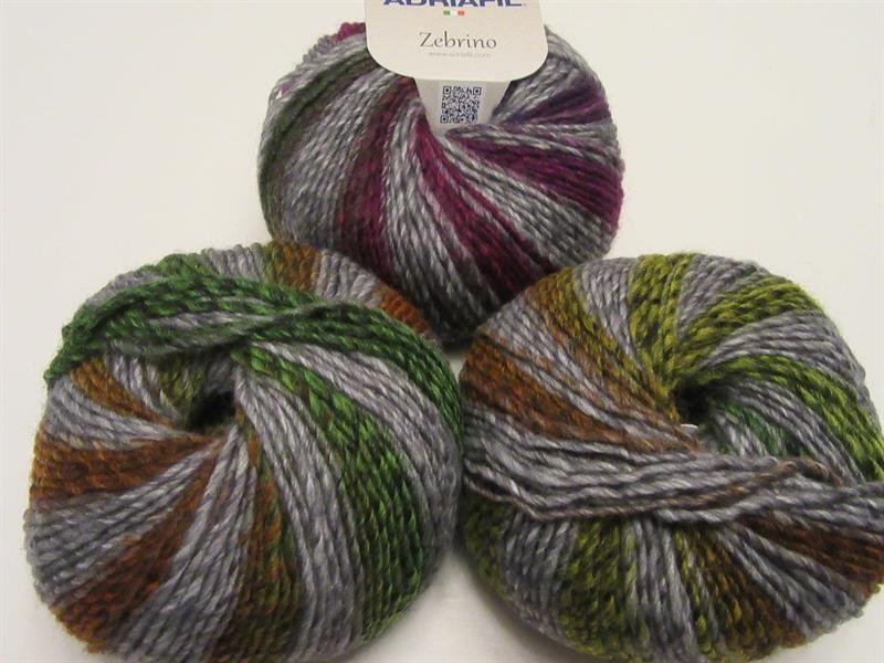 Zebrino multicolor fancy