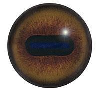 Ögon E12 24mm