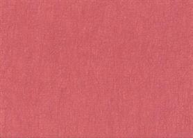 Enzimi Red