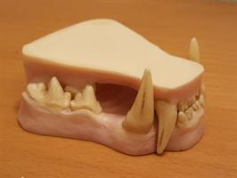 Lo tandset utan tunga