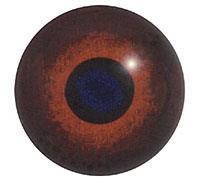 Ögon B01 14mm