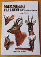 Bildstudie över europeiska däggdjur