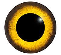 Ögon M10 15mm