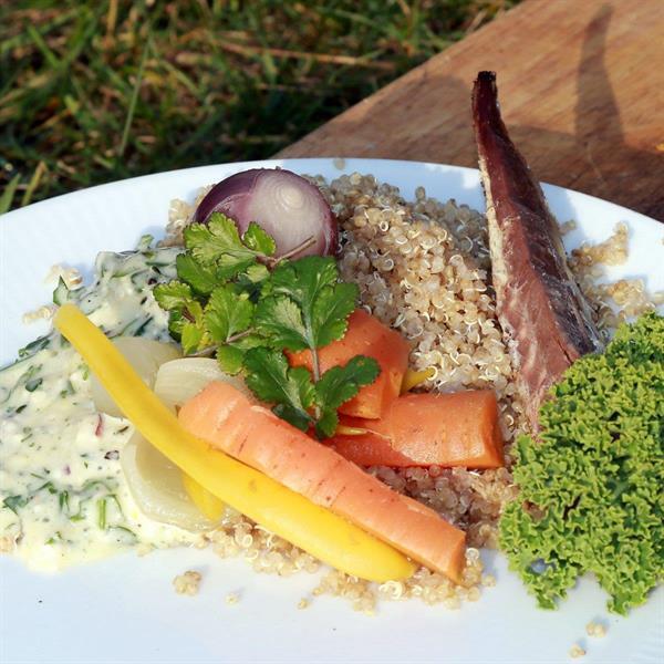 10kg - Quinoa - Svensk