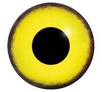 Ögon M10 8mm