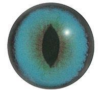 Ögon H06 16mm