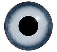 Ögon M21 14mm