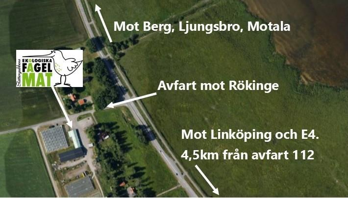 Fågelmat i Linköping - Slåttergubben