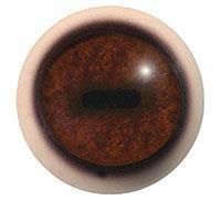 Ögon T08 26/30 mm