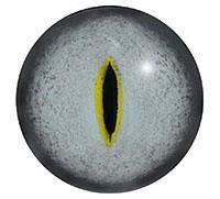 Ögon R65 8mm