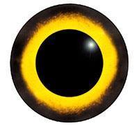 Ögon M22 14mm