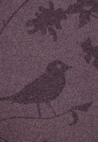 Birdy, Berry Converse