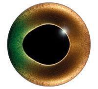 Ögon K24