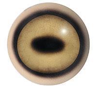 Ögon T02 28/32mm