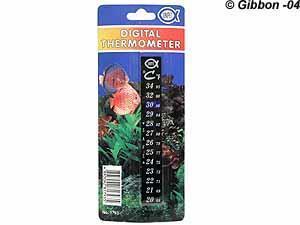 Termometer klistras på akvariet