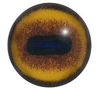 Ögon E15 24mm