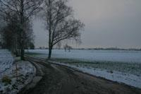 Grusväg på vintern