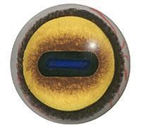 Ögon E10 30mm