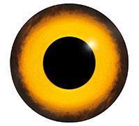 Ögon M15 9mm