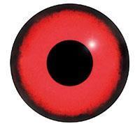 Ögon M42 12mm