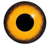 Ögon M08 10mm