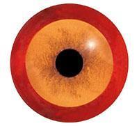 Ögon M62 18mm