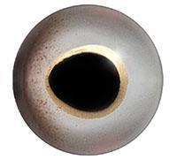 Ögon 02