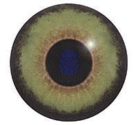 Ögon B39 26mm