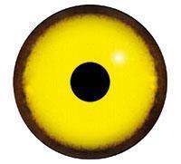 Ögon M43 9mm