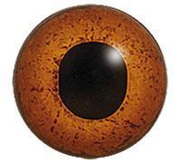 Ögon 18mm Fälthare