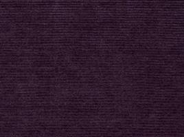 United Purple