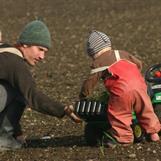 Sådd av grödor med barnen