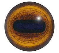 Ögon E07 28mm