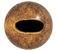 Ögon R17 6mm