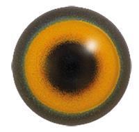 Akryl ögon 18mm