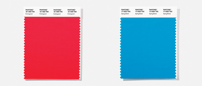 PANTONE F+H POLYESTER Swatch Cards
