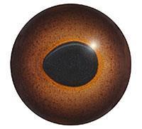 Ögon 20 12mm