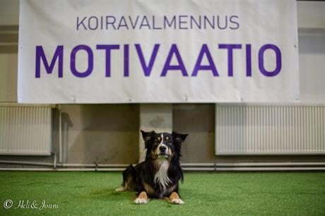 Armas Motivaatio