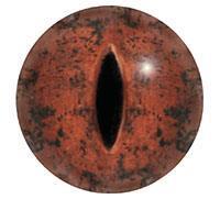 Ögon 5mm R39